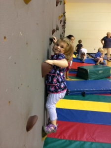 Bug rock climber